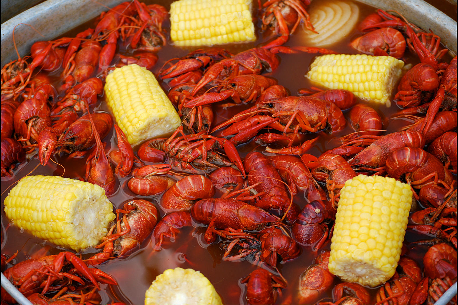 Crawfish season is here get prices for shreveport bossier for Craft store new orleans